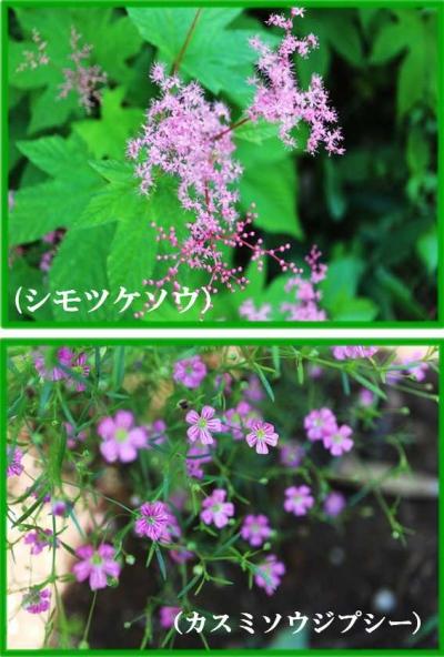 Photo_20200607094101